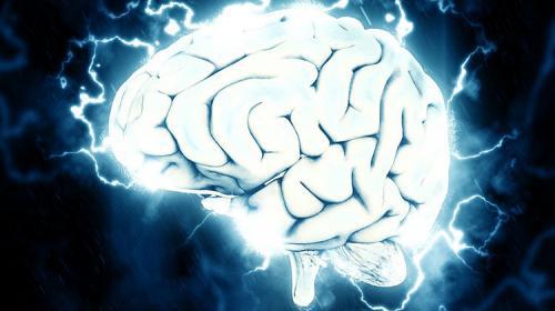 Nuevo informe revelaría el secreto de la inteligencia