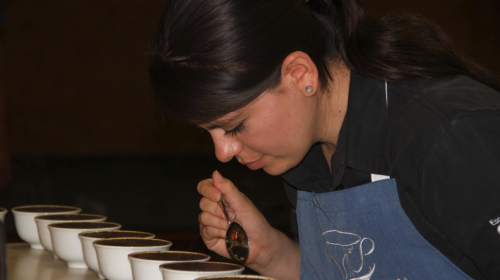 El mejor café nacional se cultiva en Acatenango