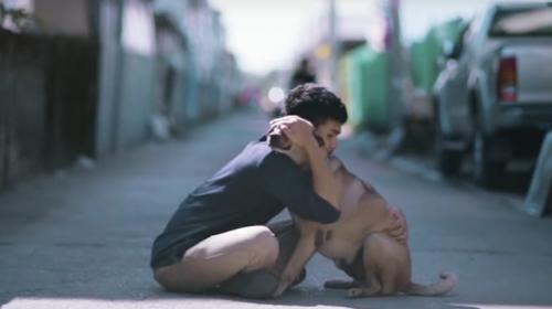Mira esta emotiva campaña viral para rescatar perros callejeros
