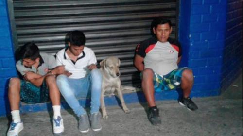 Este perro sufrió la captura de su dueño y así reaccionó
