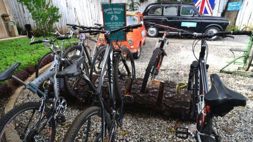 Usa bicicleta: ¡ahorra tiempo y dinero!