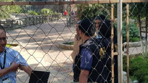 Delincuentes roban en zoológico de Xela: ¡se llevan hasta un caimán!