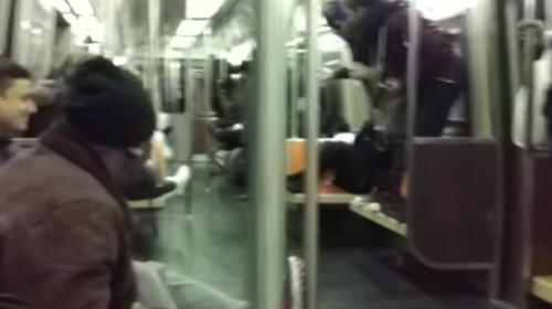 Una pequeña rata causa pánico en un metro de Nueva York