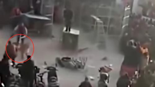 Terror en la calle: tigre escapa de circo ambulante y ataca al público