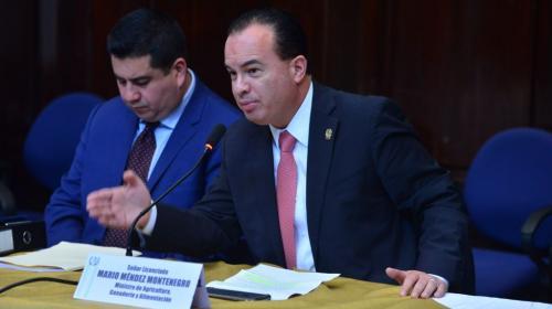 Congreso mantiene con inmunidad al jefe del MAGA