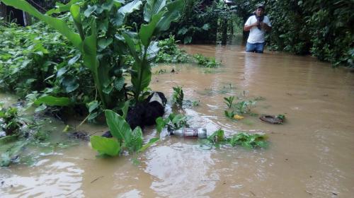 Temporada de lluvias deja 31 muertos y más de 390 mil afectados