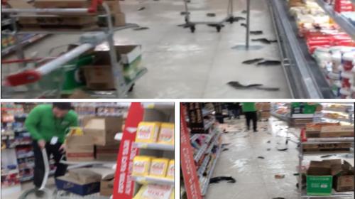 Supermercado se convierte en acuario gigante tras explosión de pecera
