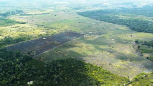 Entre fuego y balas, así se recupera terreno en la Biósfera Maya