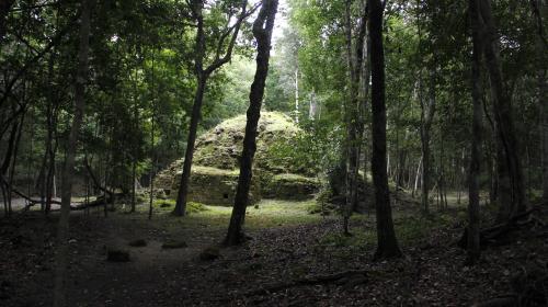 Ocho datos que reveló el documental de NatGeo sobre los mayas