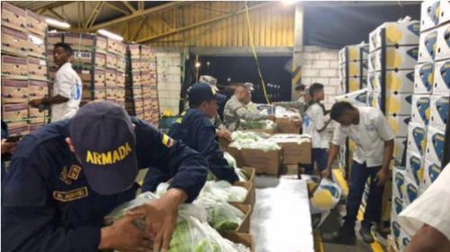 """""""Narcobananos"""", encontraron cocaína en este inusual cargamento"""
