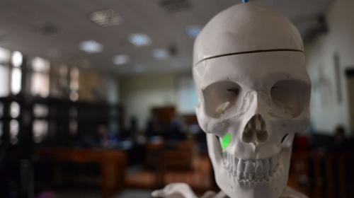 ¿Qué hace un esqueleto en la audiencia del caso Cooptación del Estado?