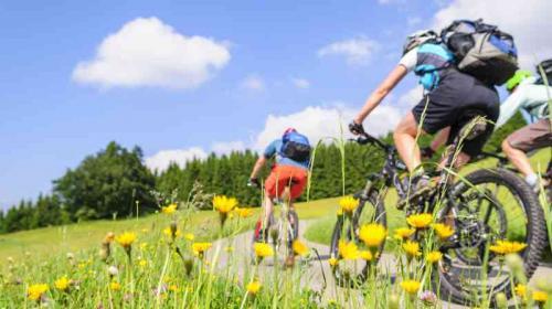 La SAAS quiere comprar bicicletas montañesas
