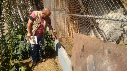 Dos guacamayas y un loro fueron robados del zoológico de Xela