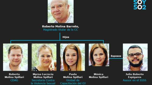 Roberto Molina Barreto, el magistrado del nepotismo