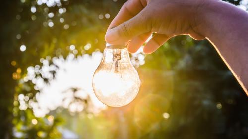 Ocho invenciones ecológicas que están salvando al planeta