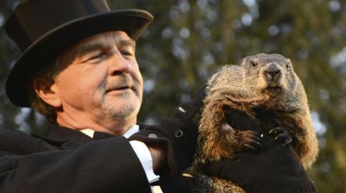 ¿Qué es y por qué se celebra el Día de la Marmota en Estados Unidos?