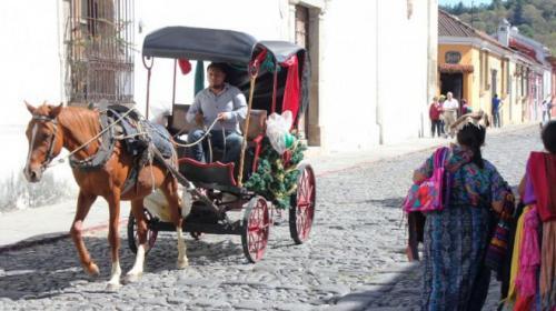 Ciudadanos se unen para prohibir paseos de caballos en la Antigua