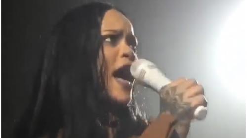 Un fanático sorprende a Rihanna durante un concierto