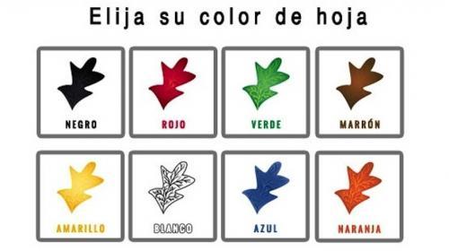 El color de estas hojas revela tu personalidad