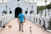 ¿Pacto con el diablo? Decenas de gatos cuidan las tumbas de un pueblo