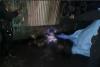 Vecinos reportan macabro hallazgo en cercanías del Cenma
