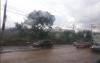 Lluvias afectan a más de 30 mil personas y deja un muerto