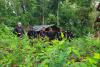 PNC localiza narcolaboratorio y gigantesca plantación de coca